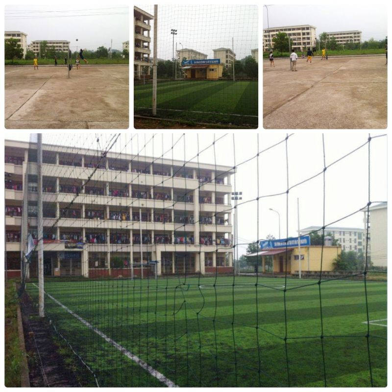 Modern and standard football, volleyball fields for physical training and entertainment of students